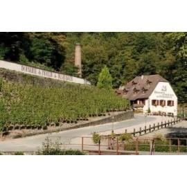 Domain du Moulin de Dusenbach, AOC Alsace, Francie